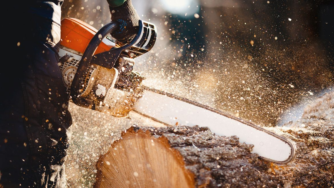 Wood Chipping and Stump Grinding
